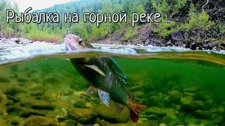 Счастливые мгновения горной рыбалки/Клёв хариуса, подводная съемка, дикая тайга и водомет в Сибири