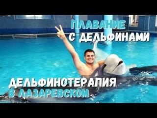 Дельфинотерапия Лазаревское. Плавание с дельфинами.