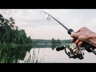 В канун Дня рыбака югорчанам рассказали о самых рыбных местах