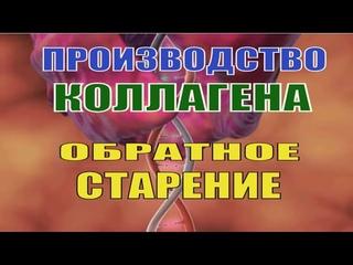 Производство Коллагена_Полная Регенерация_Восстановление_Частота д-ра Райфа