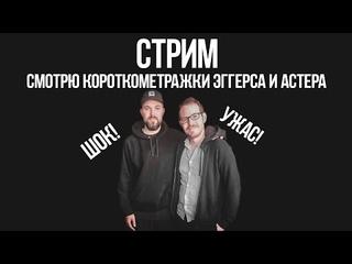 СТИМ | Короткометражки Эггерса и Астера