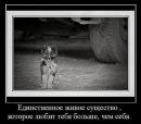 Личный фотоальбом Ольги Романенковой