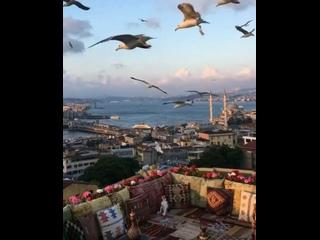 Видео от Натальи Чуриковой