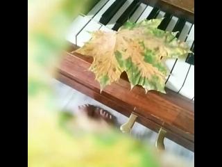 Видео от Татьяны Целиковой