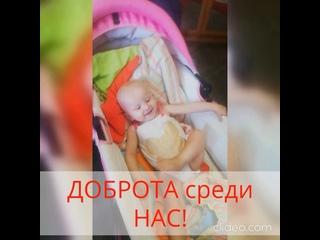Видео от Валерия Лосева. СРОЧНЫЙ СБОР
