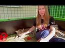 Видео от Ани Марковой