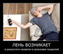 Фотоальбом Сашы Цветкова