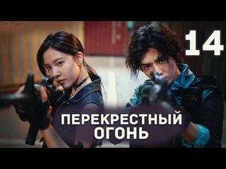 рус.саб Перекрёстный огонь (14/36)