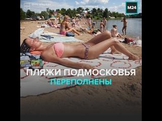 Что творится на пляжах Подмосковья? — Москва 24
