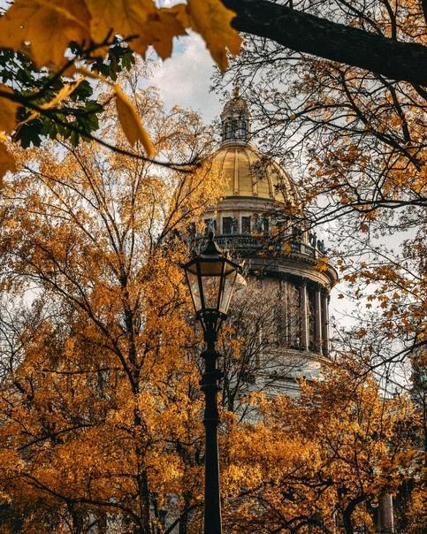 Золотая осень в Александровском саду 🍁...