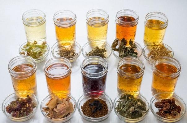 Тpaвяные, цветoчные и ягoдные чaи – кoгдa их пить и чем oни пoлезны?