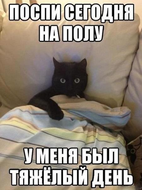 ???? Доброй ночи.