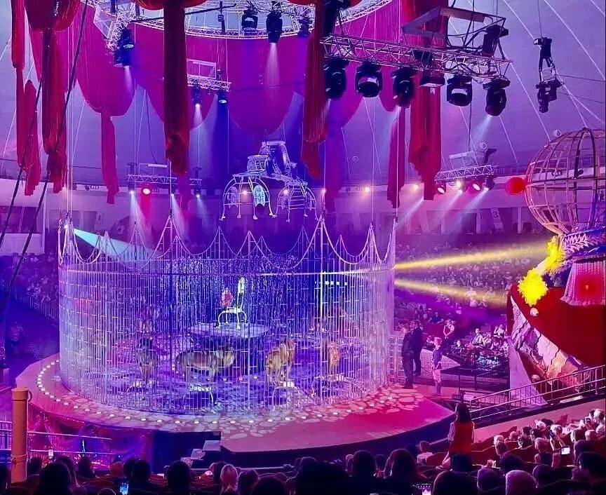 Группа ребят из Петровского района побывала в Саратовском цирке и увидела первое представление в обновлённом здании, открывшемся после реконструкции