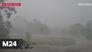 В Можайск пришла серьезная непогода и ураган - Москва 24