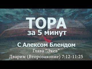 «ЭКЕВ» «Тора за 5 минут» — А.БЛЕНД