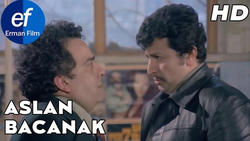 Aslan Bacanak 1977 HD Zeki Alasya Metin Akpınar
